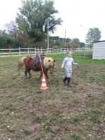 equitazione educativa codroipo 03 150x200 Equitazione Educativa in fattoria a Codroipo