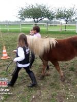 equitazione educativa codroipo 04 150x200 Equitazione Educativa in fattoria a Codroipo