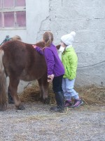 equitazione educativa codroipo 09 150x200 Equitazione Educativa in fattoria a Codroipo