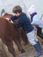 equitazione educativa codroipo 10 150x200 Equitazione Educativa in fattoria a Codroipo