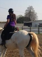 equitazione educativa friuli 3 150x200 Equitazione Educativa in fattoria a Codroipo